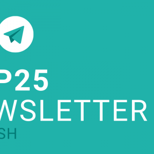 COP25 Newsletter EN – summarized!